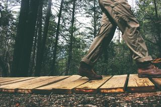 Wood-nature-person-walking-medium