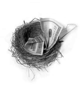 Nest-egg-security-1241471-639x705
